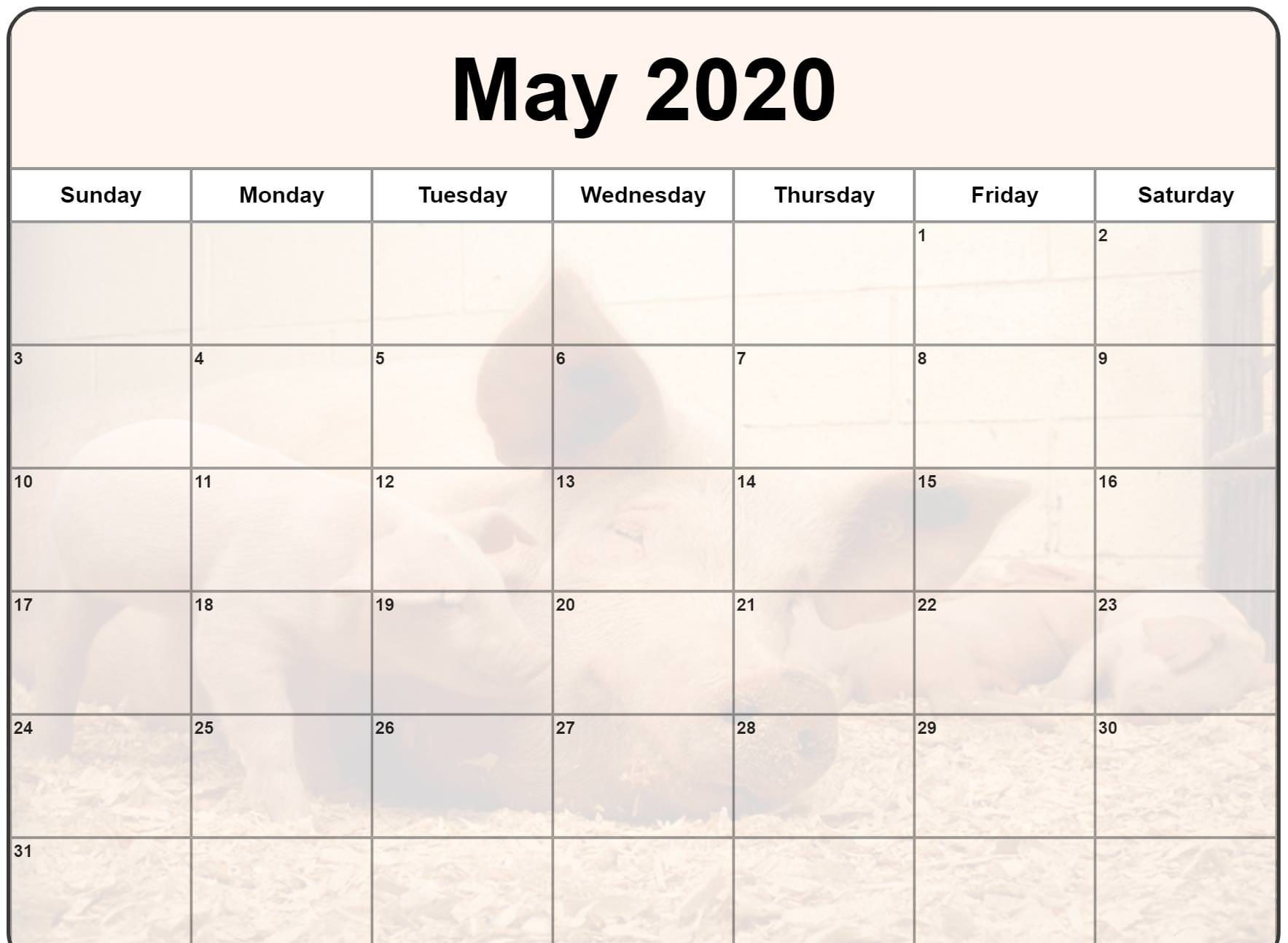 Cute May 2020 Calendar Floral Wall Calendar Design May 2020 1767x1294
