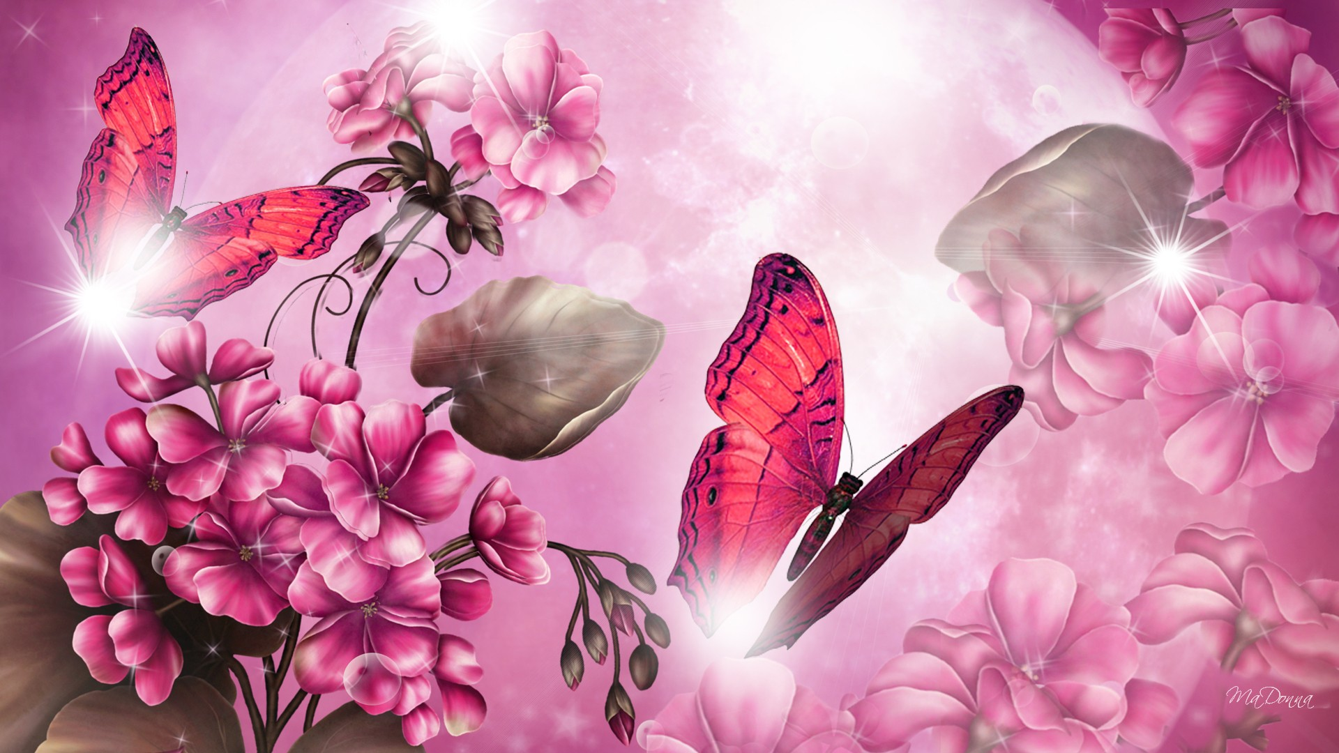 Pink Butterfly Wallpaper Images at Abstract Monodomo 1920x1080