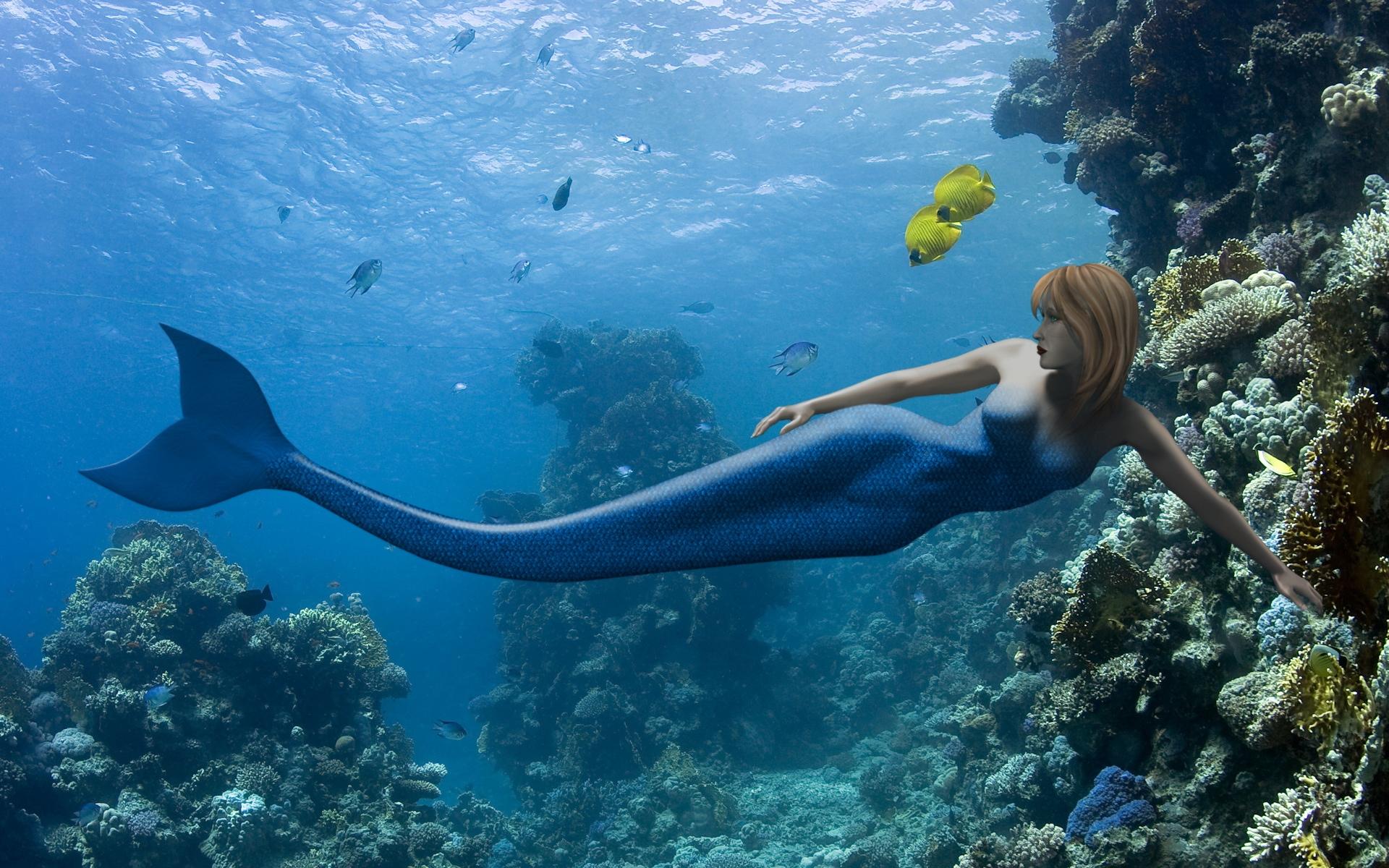 Free Live Wallpapers Mermaid