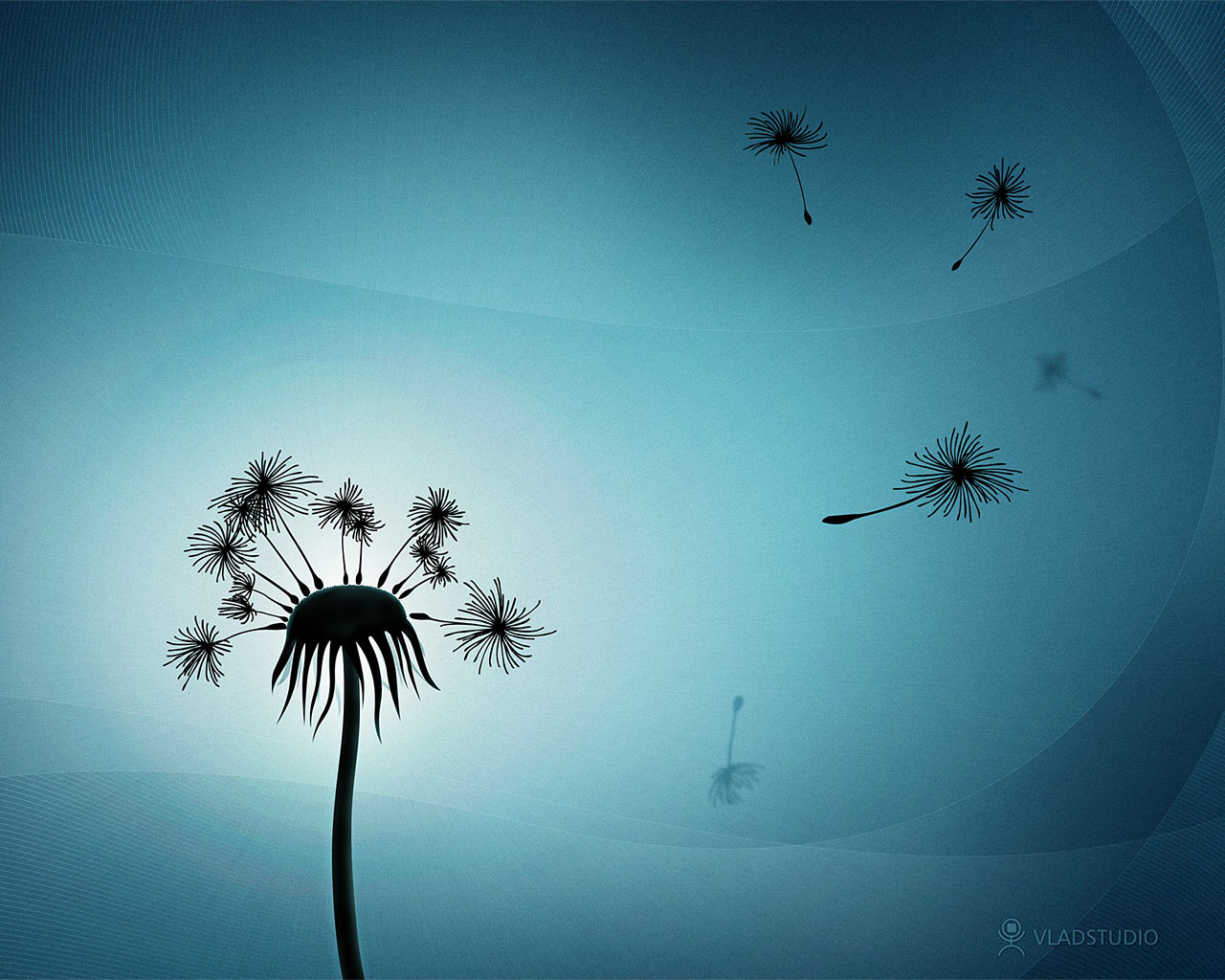 1280x1024 Dandelion bits desktop PC and Mac wallpaper 1280x1024