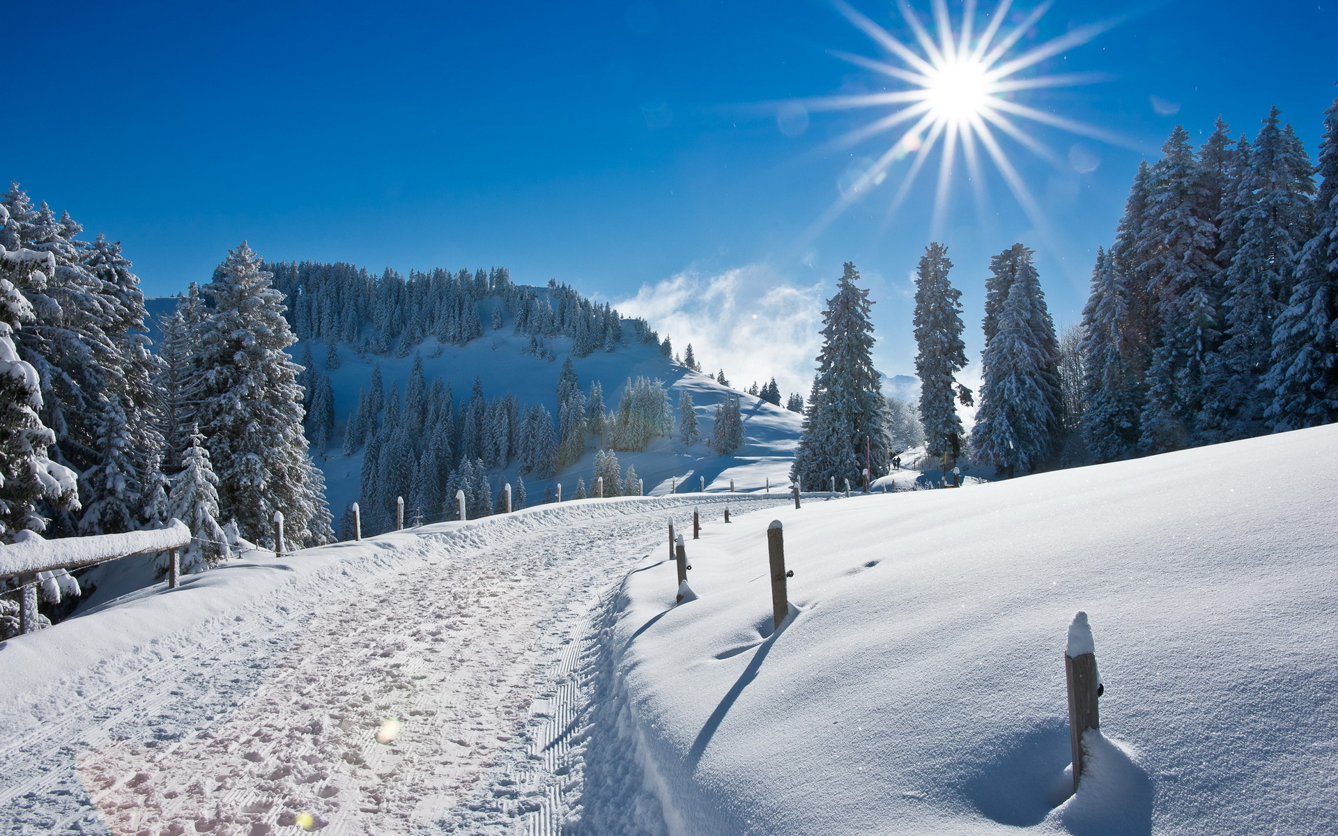 Winter Snow Road Hd Wallpaper Download wallpapers page 1920x1200
