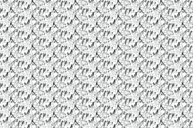 Birds Pattern 620x413