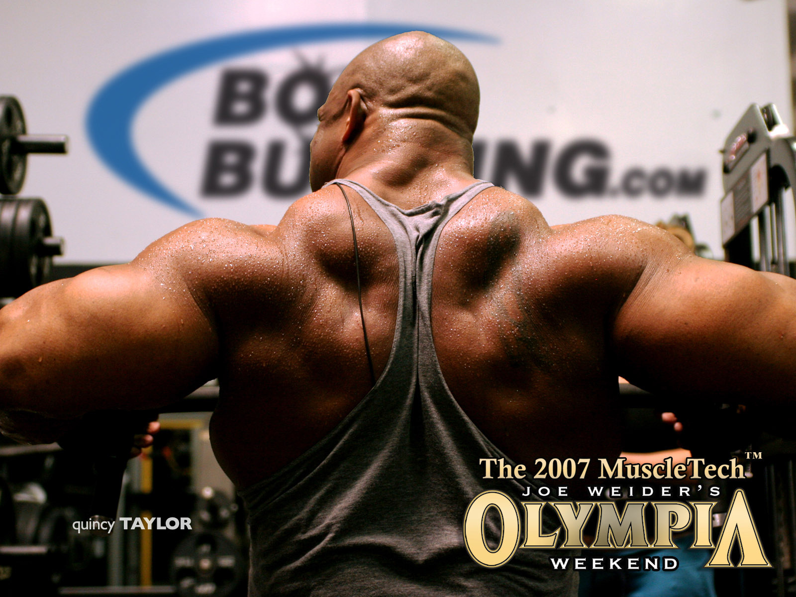Wallpapers Mr Olympia Quincy Taylor HD Wallpapers Mr Olympia 1600x1200