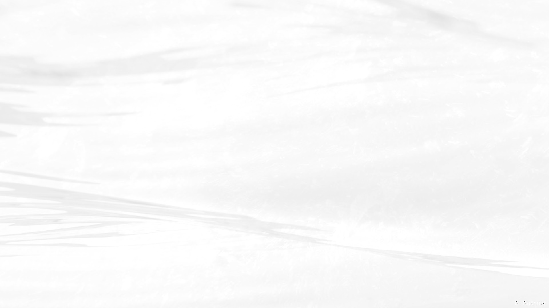 White Wallpaper Abstract