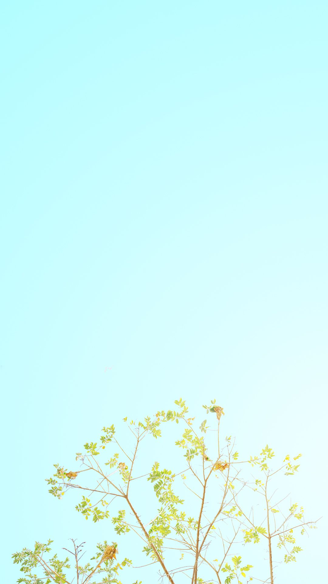 Spring Minimalist wallpapers ...