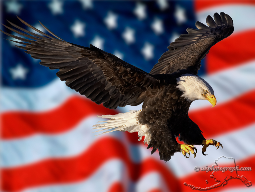 Wallpaper American Flag With Eagle