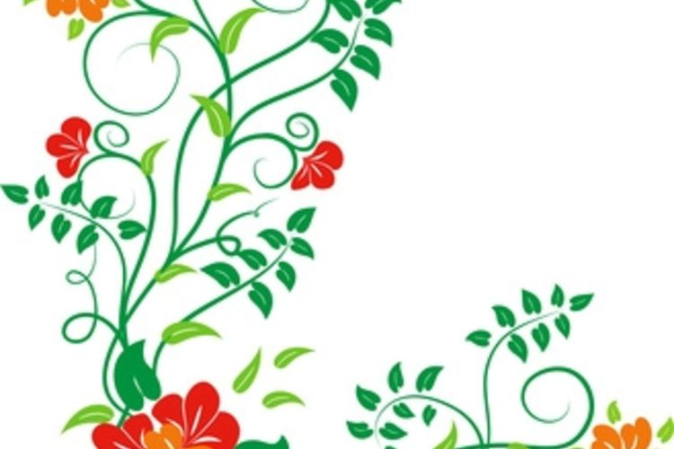 Cheap discontinued discount wallpaper border by christian 750x500