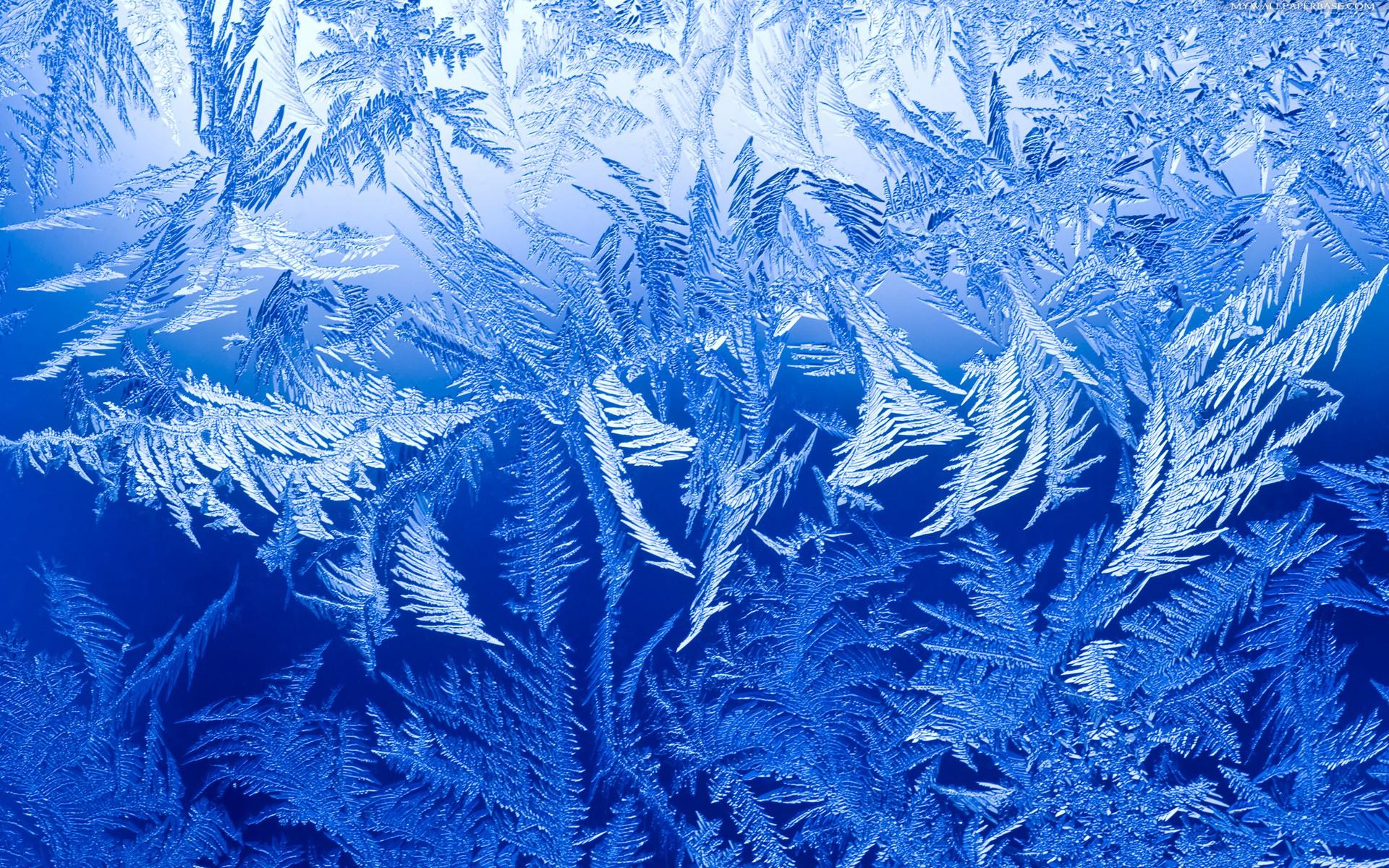 wallpaper ice wallpapersafari
