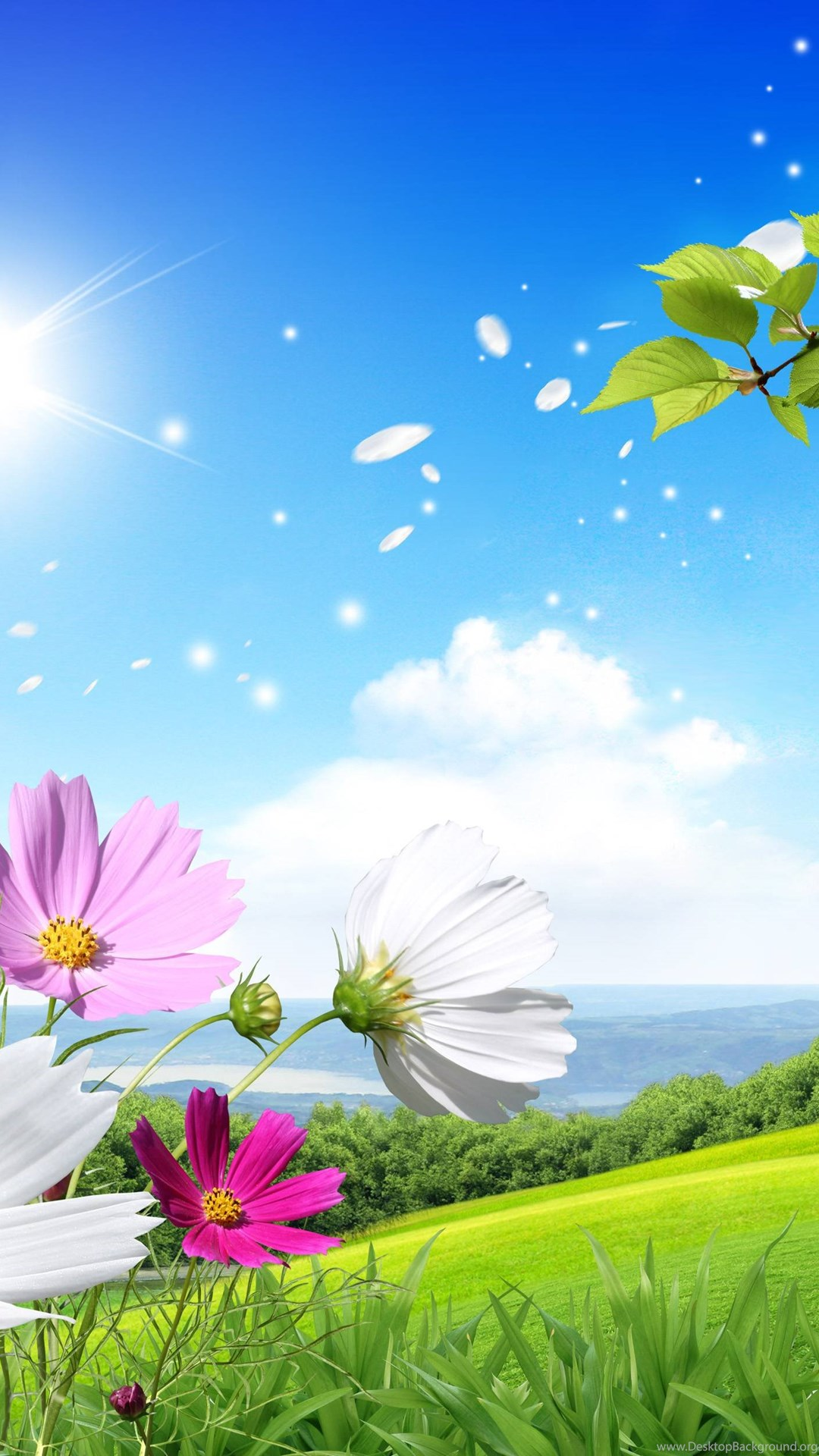 Spring Wallpapers For Iphone 6 702689   HD Wallpaper Download 1080x1920