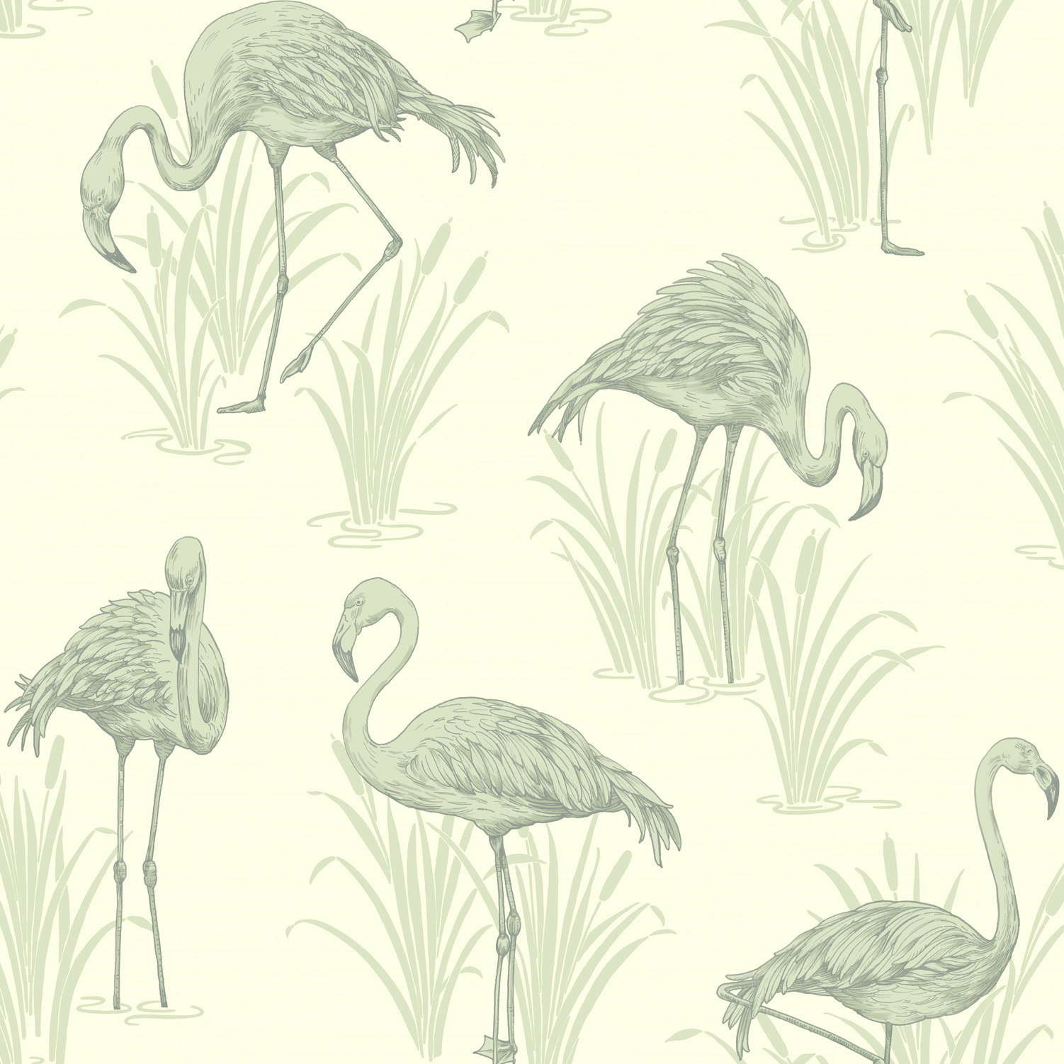 Coral Lagoon Flamingo Wallpaper by Arthouse Lochs and Lagoons 1502x1502