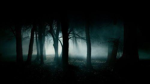 Image   Wiki background   Horror Film Wiki 500x281