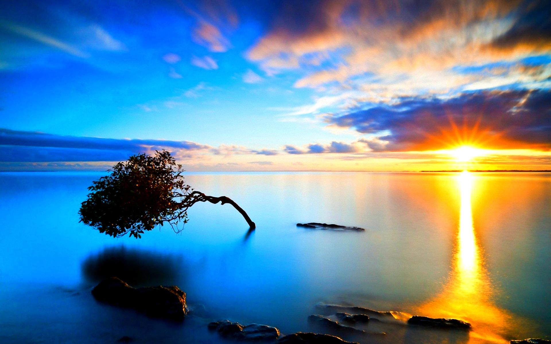 BRAND NEW DAY WALLPAPER   60740   HD Wallpapers   [wallpapersinhq 1920x1200