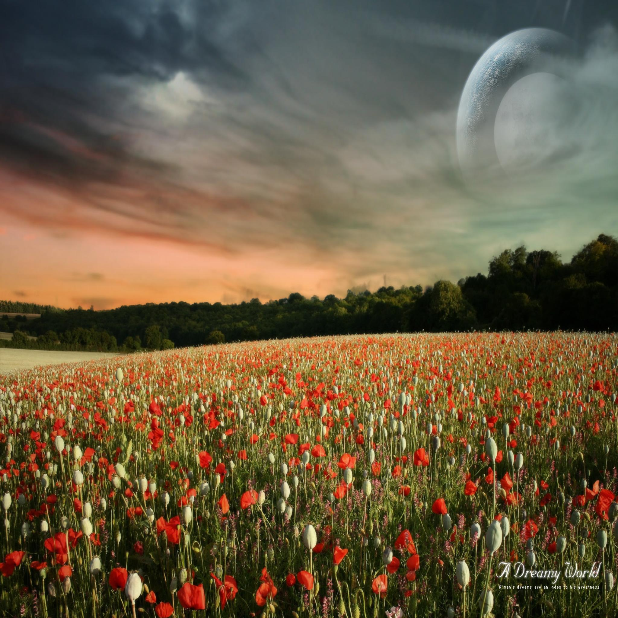 HD Wallpapers 2048x2048 Dreamy Fantasy Wallpapers 2048x2048 Download 2048x2048