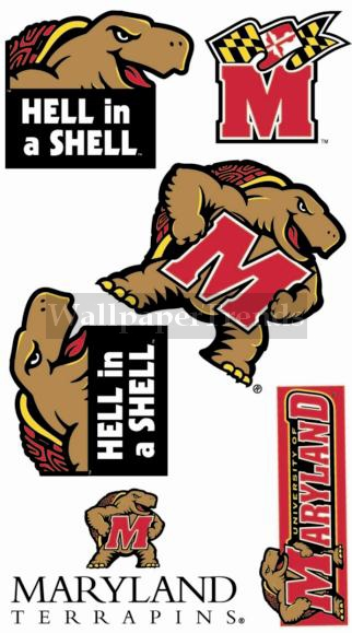 UM University of Maryland Terapins Wall Decals Removable Wall Stickers 322x579