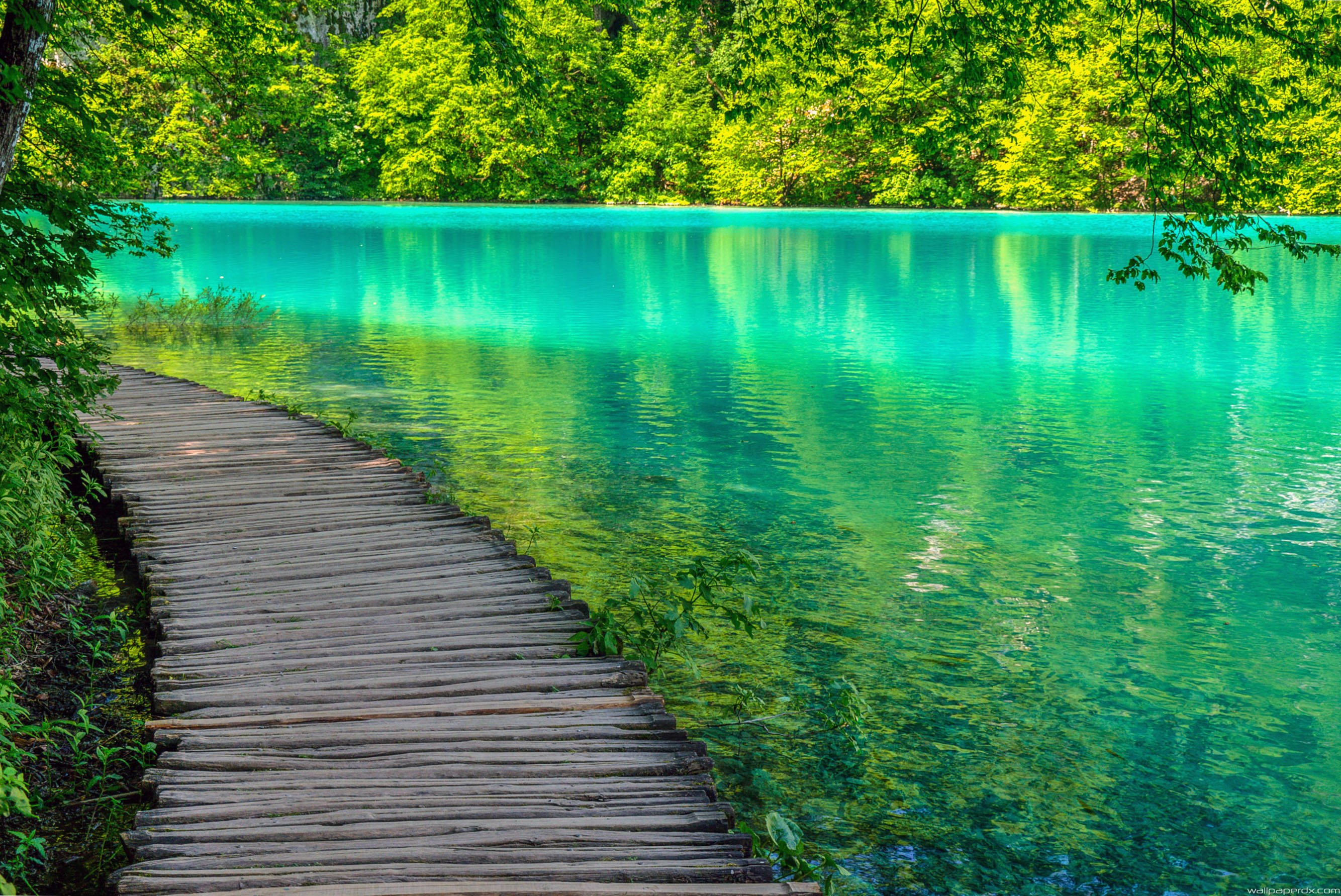 Plitvice lake Wallpapers and Background Images   stmednet 2668x1783