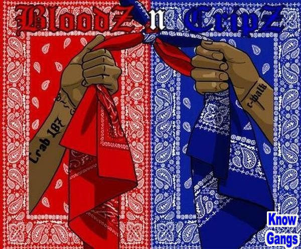 BLOODS AND CRIPS LA GANGS FULL DOCUMENTARY MAD NEWS 600x496