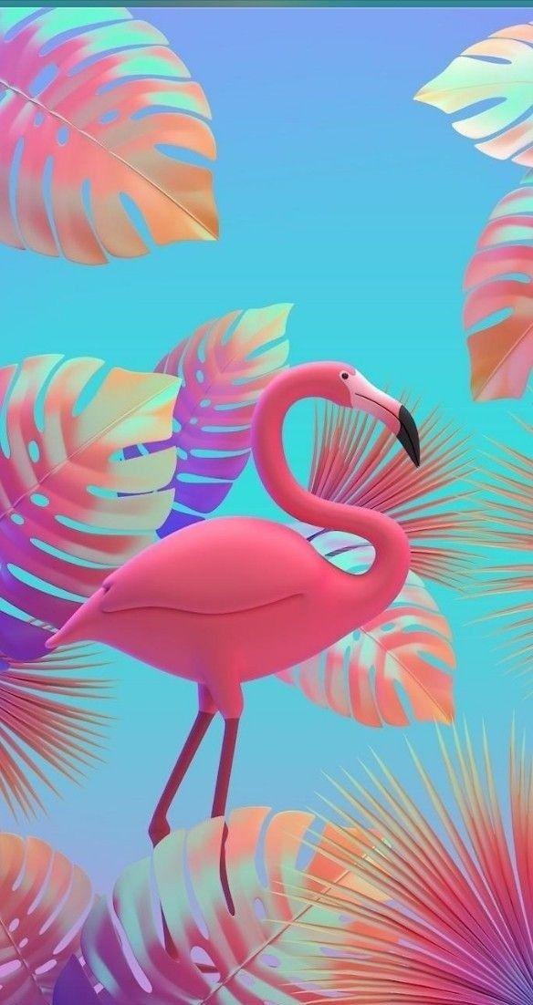 Pin by Katia Costa on Mis fondos de pantalla Pink flamingo 584x1102