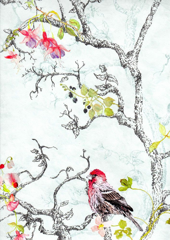 Vintage Bird Floral Print Vibrant Feature Wallpaper 97890 707x1000