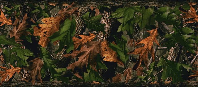 Youre reviewing Realtree Hardwoods Green Wallpaper Border 640x281