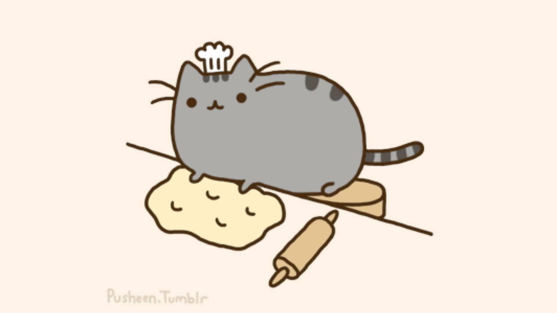 Pusheen The Cat Background Images Pictures   Becuo 1920x1080