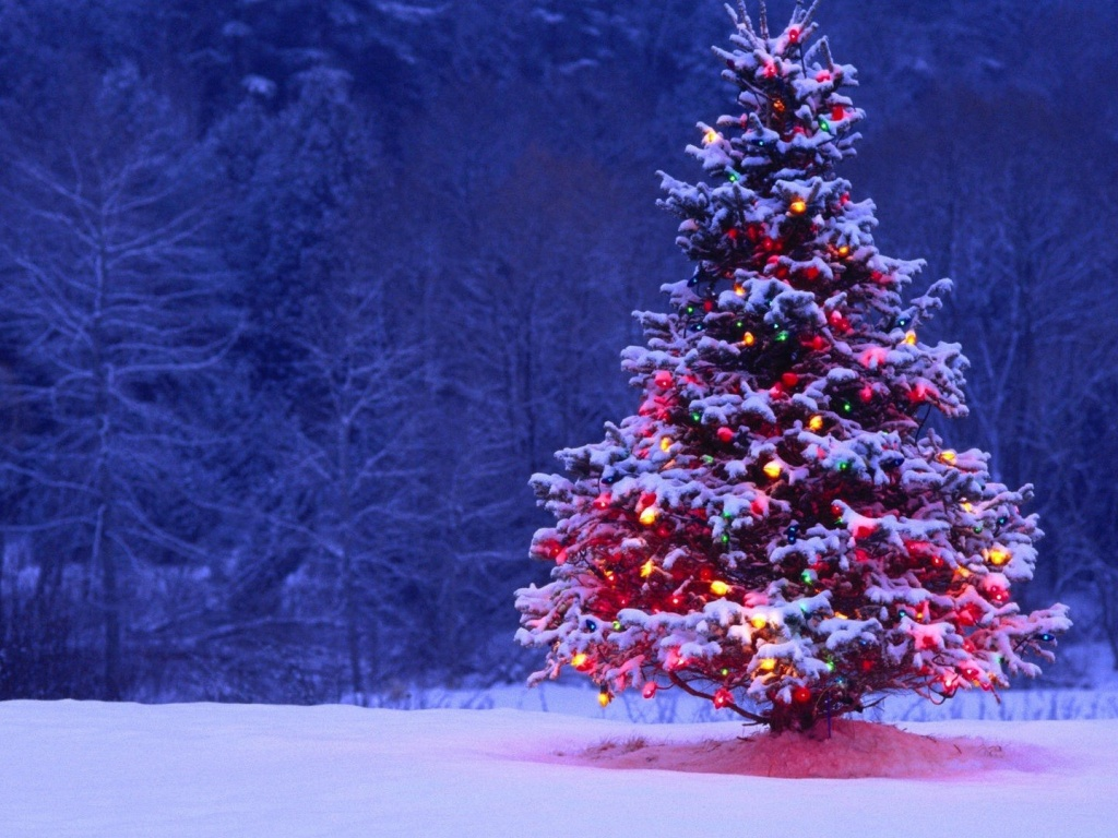 1024x768 Christmas Tree desktop PC and Mac wallpaper 1024x768