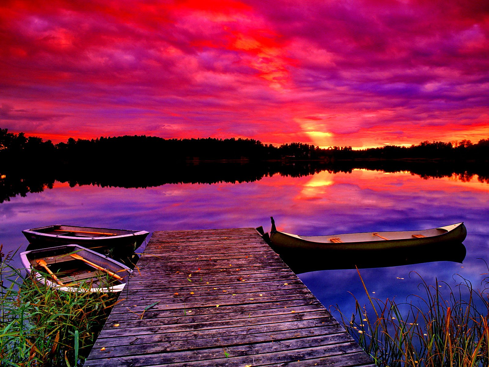 Purple sunset wallpaper - ForWallpaper.com