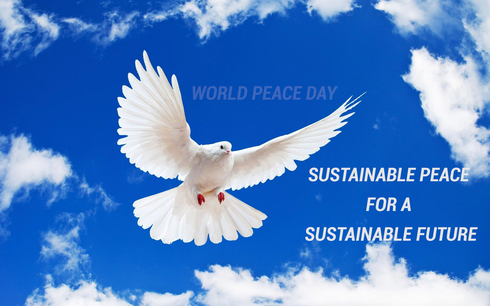 International Day of Peace Wallpaper 10   1680 X 1050 stmednet 1680x1050