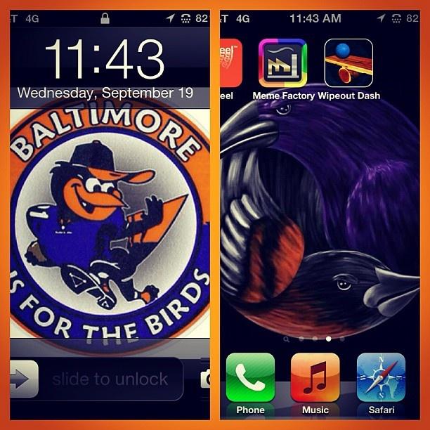 Baltimore Wallpaper: Baltimore Ravens And Orioles Wallpaper