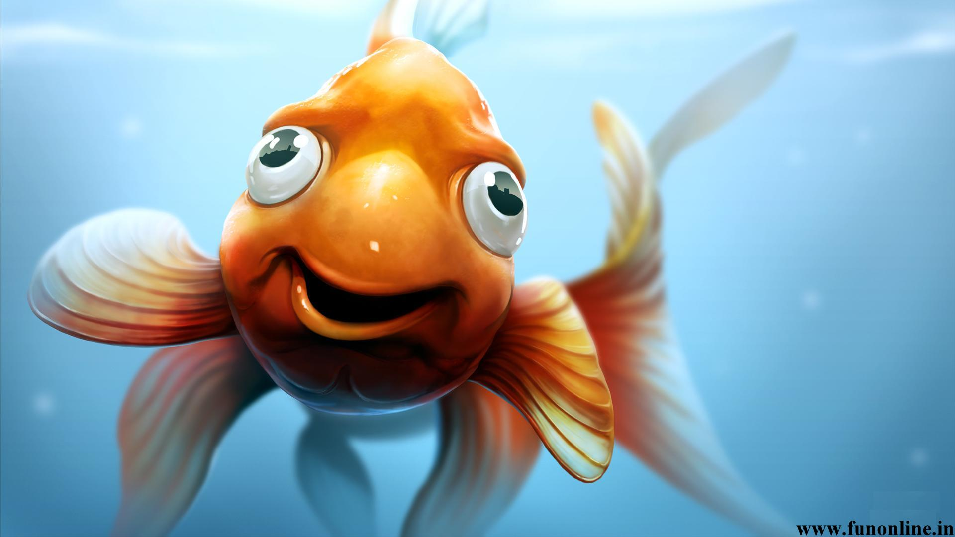 Goldfish Wallpapers Download Funny Kitten and Goldfishes Wallpaper 1920x1080