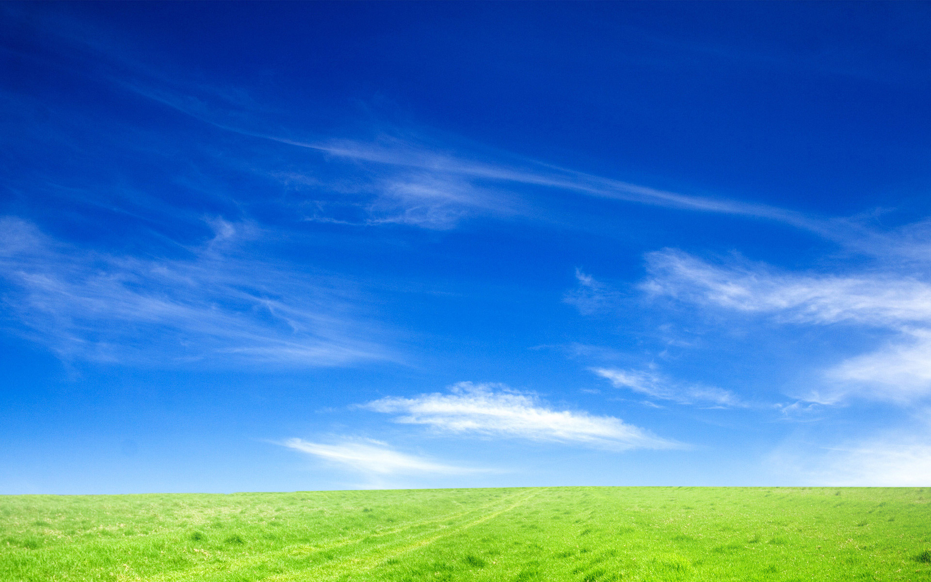 Blue Sky and Green Grass Desktop and mobile wallpaper Wallippo 1920x1200