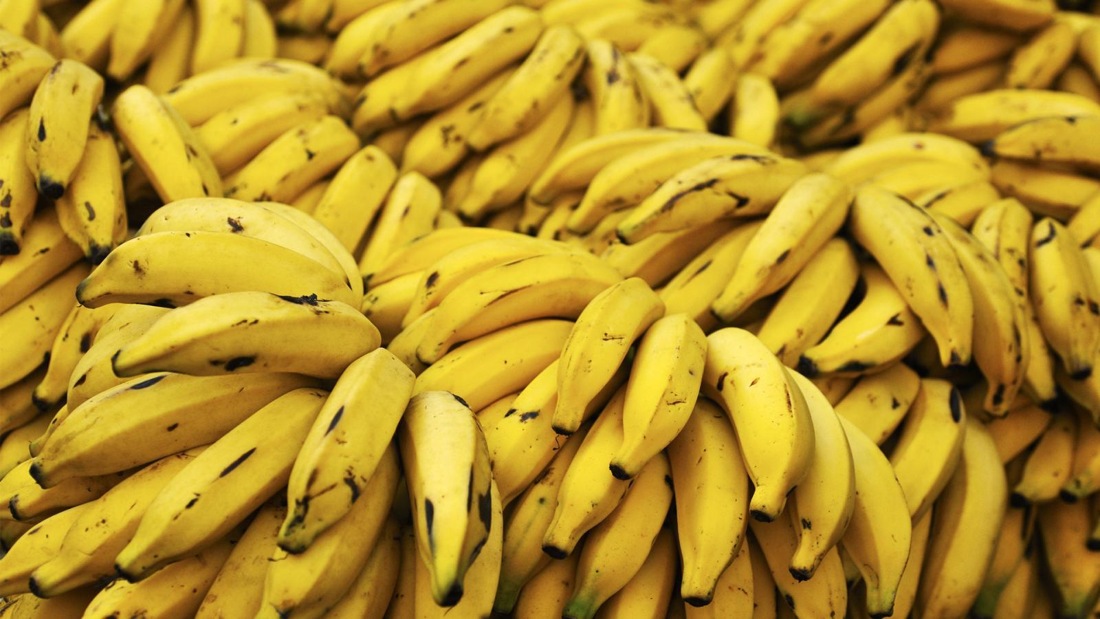 yellow fruits bananas HD 169 1280x720 1366x768 1600x900 1920x1080 1600x900