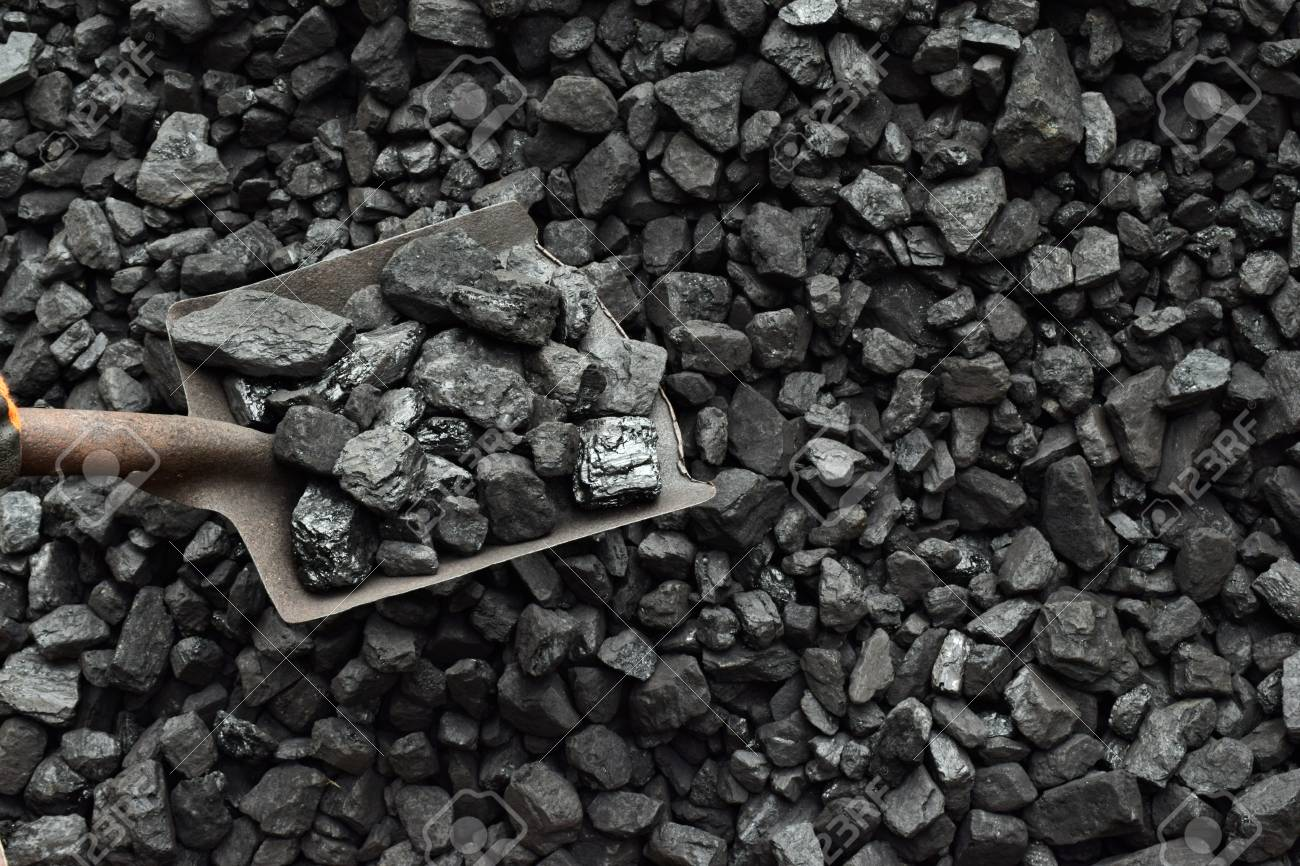 Shovel And Coal In The Background Coal Mine Stock Photo Picture 1300x866