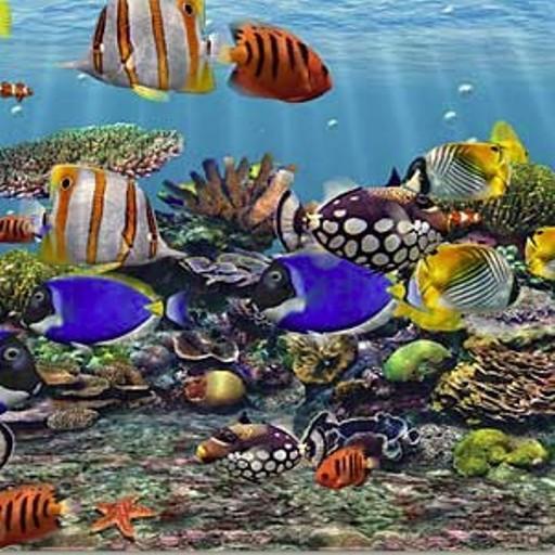 live wallpapers wallpapers waterfall gallery fish aqua 3d aquarium 512x512