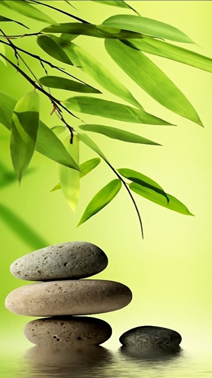 Related For Zen Iphone Wallpaper 910884   HD Wallpaper 720x1280