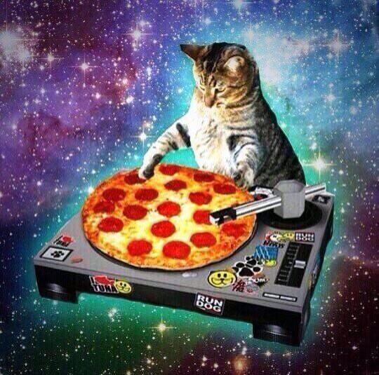 The Space Cats twitter account is the greatest thing ever 12 Pics 540x535