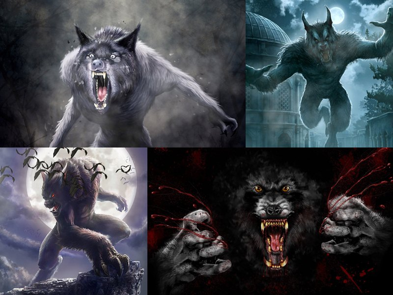 ancient werewolf wallpaper-#6