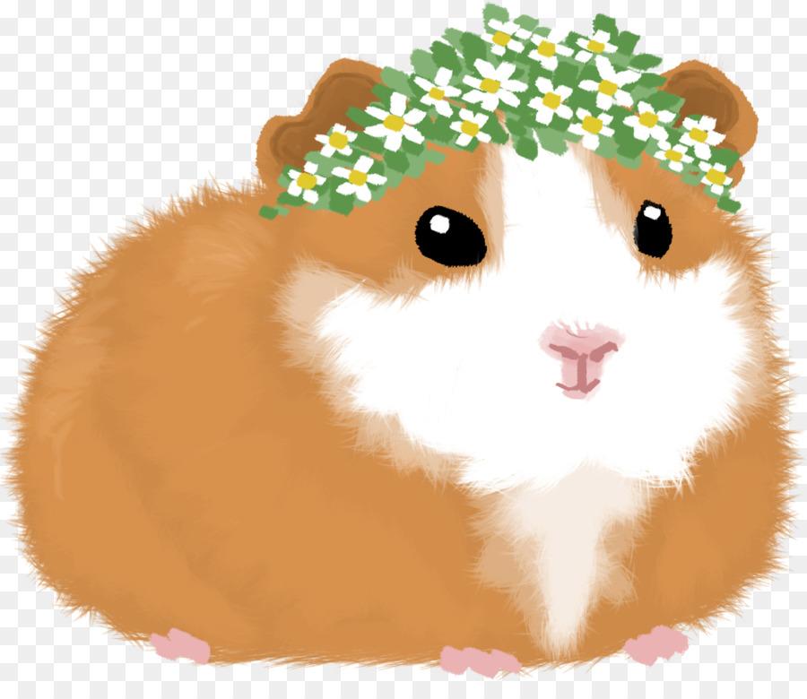 Hamster Background png download   12601067   Transparent 900x780