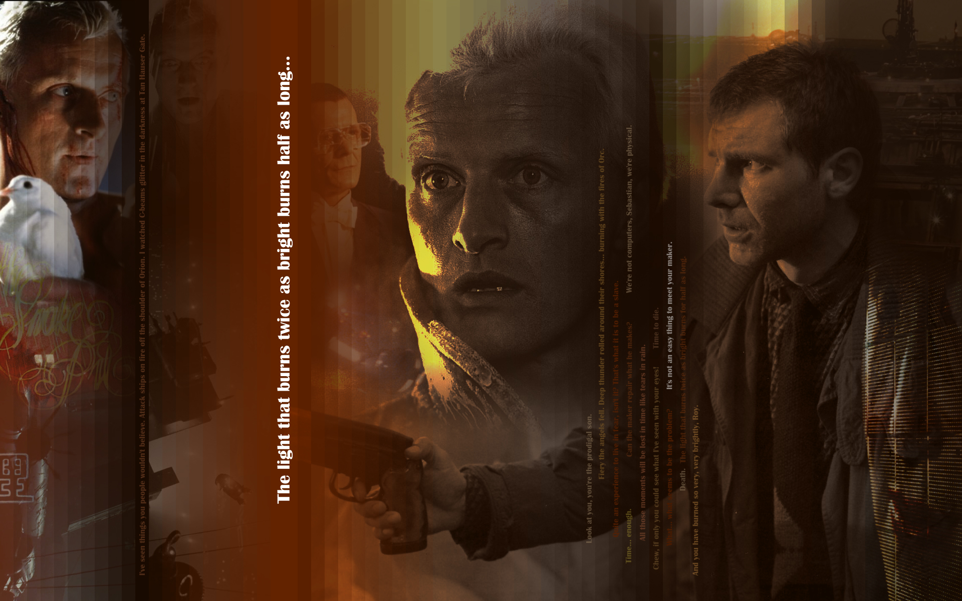 Blade Runner imagens Twice as bright half as long HD wallpaper 1920x1200