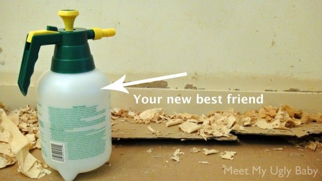 homemade wallpaper remover no chemicals no muscles - Wallpaper Removal Solution