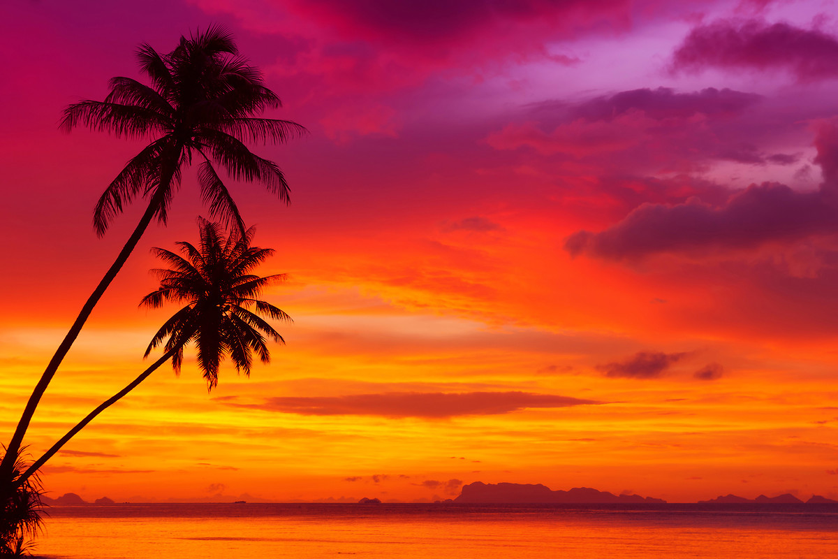 Hd Tropical Island Beach Paradise Wallpapers And Backgrounds: [41+] Tropical Sunset Wallpaper Free On WallpaperSafari