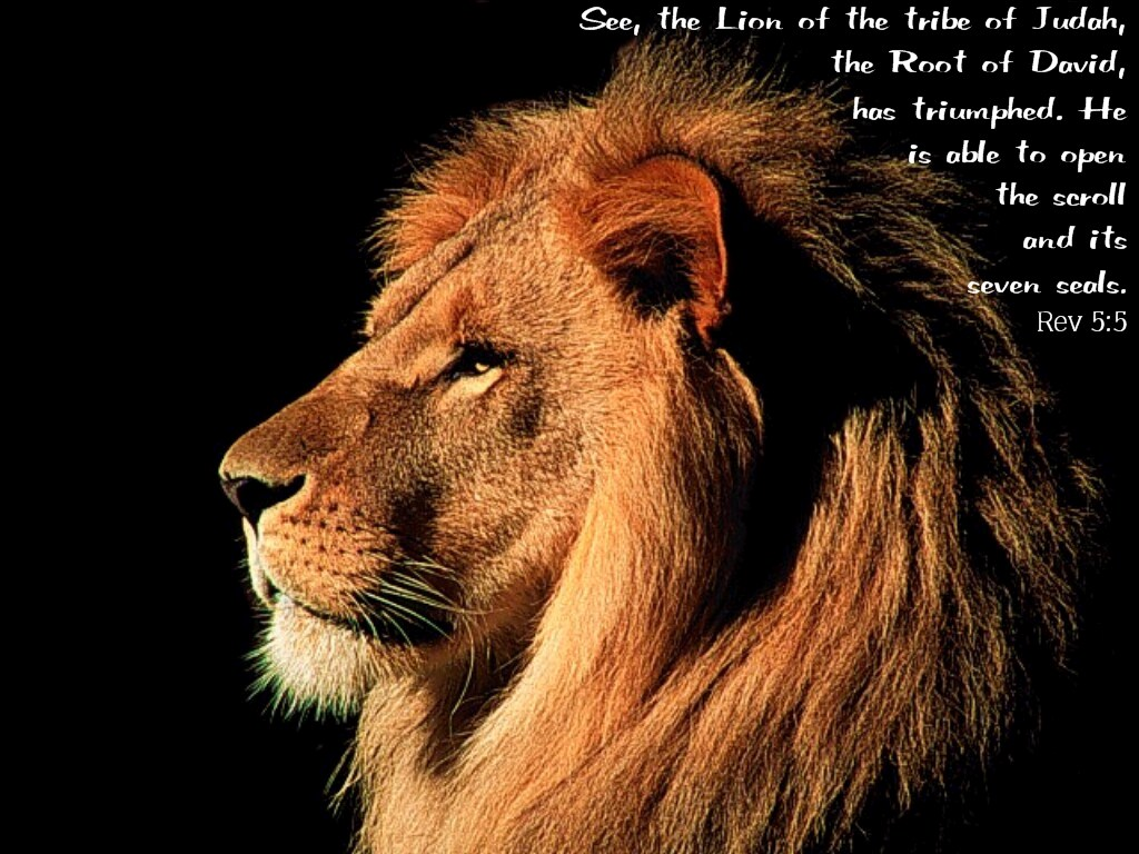Lion Of Judah Wallpaper 1024x768