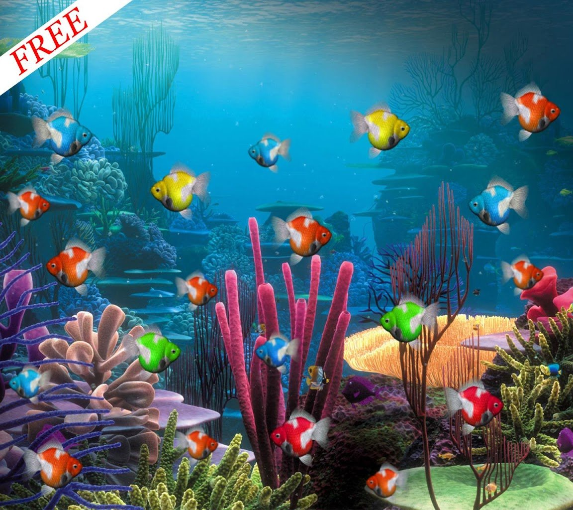 Aquarium live wallpaper for pc wallpapersafari for Aquarium fish online