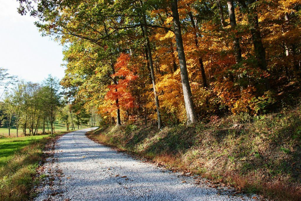Southern Illinois Autumn Scenery of Southern Illinois Fall 1024x683