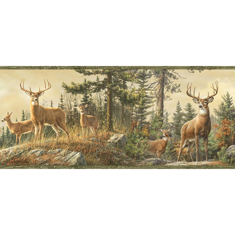Chesapeake Ashmere Green Whitetail Crest Wallpaper Border Sample 1000x1000
