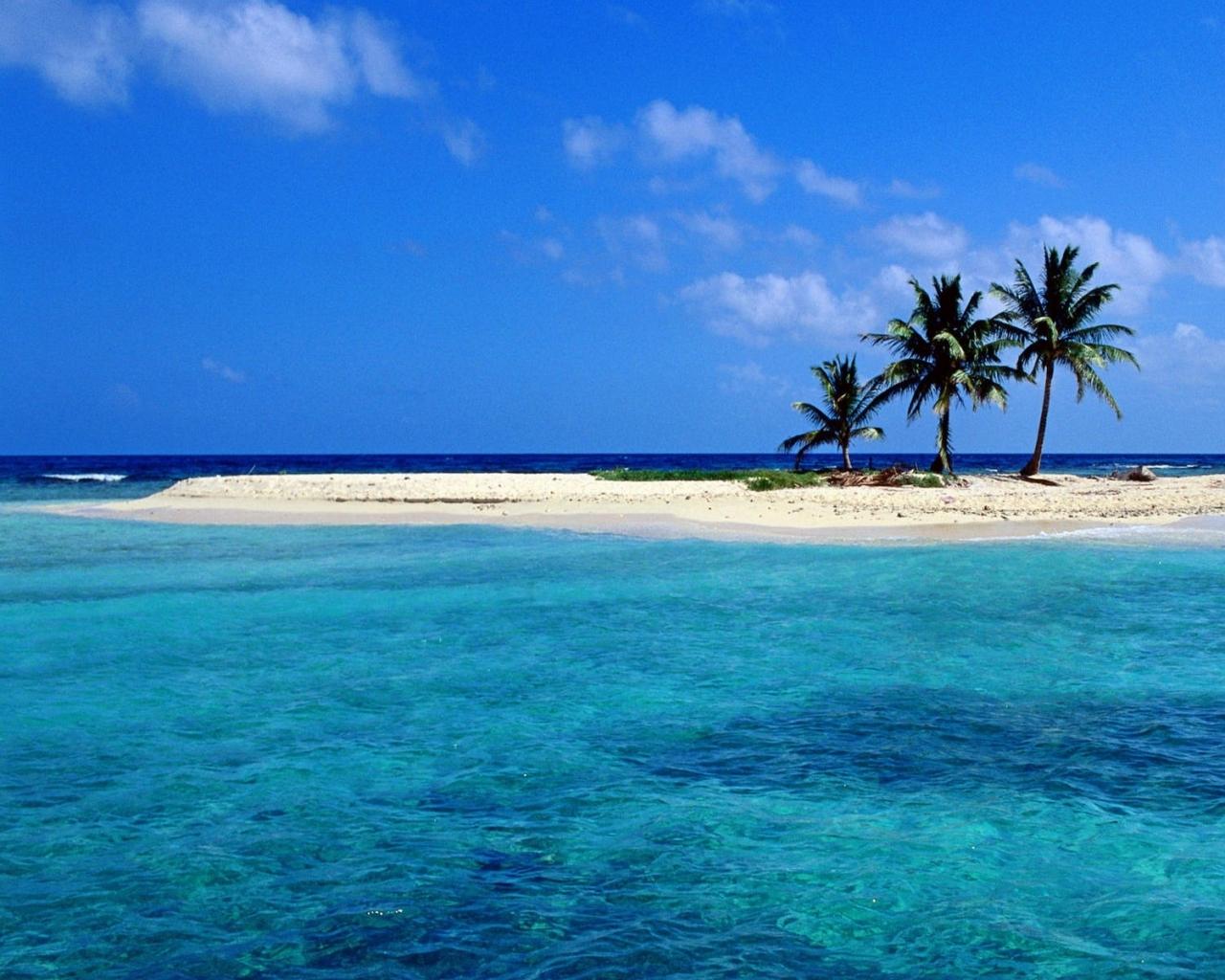 Download Wallpapers Download 1280x1024 blue ocean beach trees sea 1280x1024