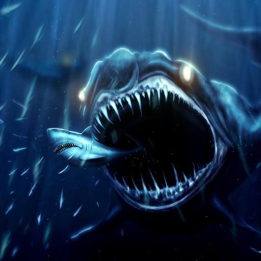 49+ Live Shark Wallpapers on WallpaperSafari