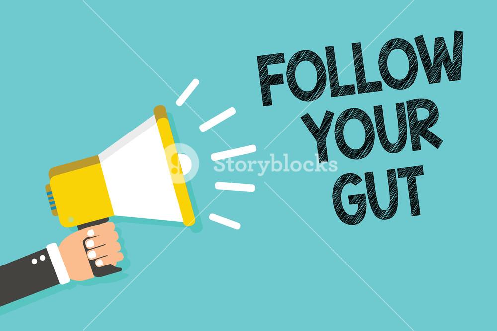 Writing note showing Follow Your Gut Business photo showcasing 1000x667