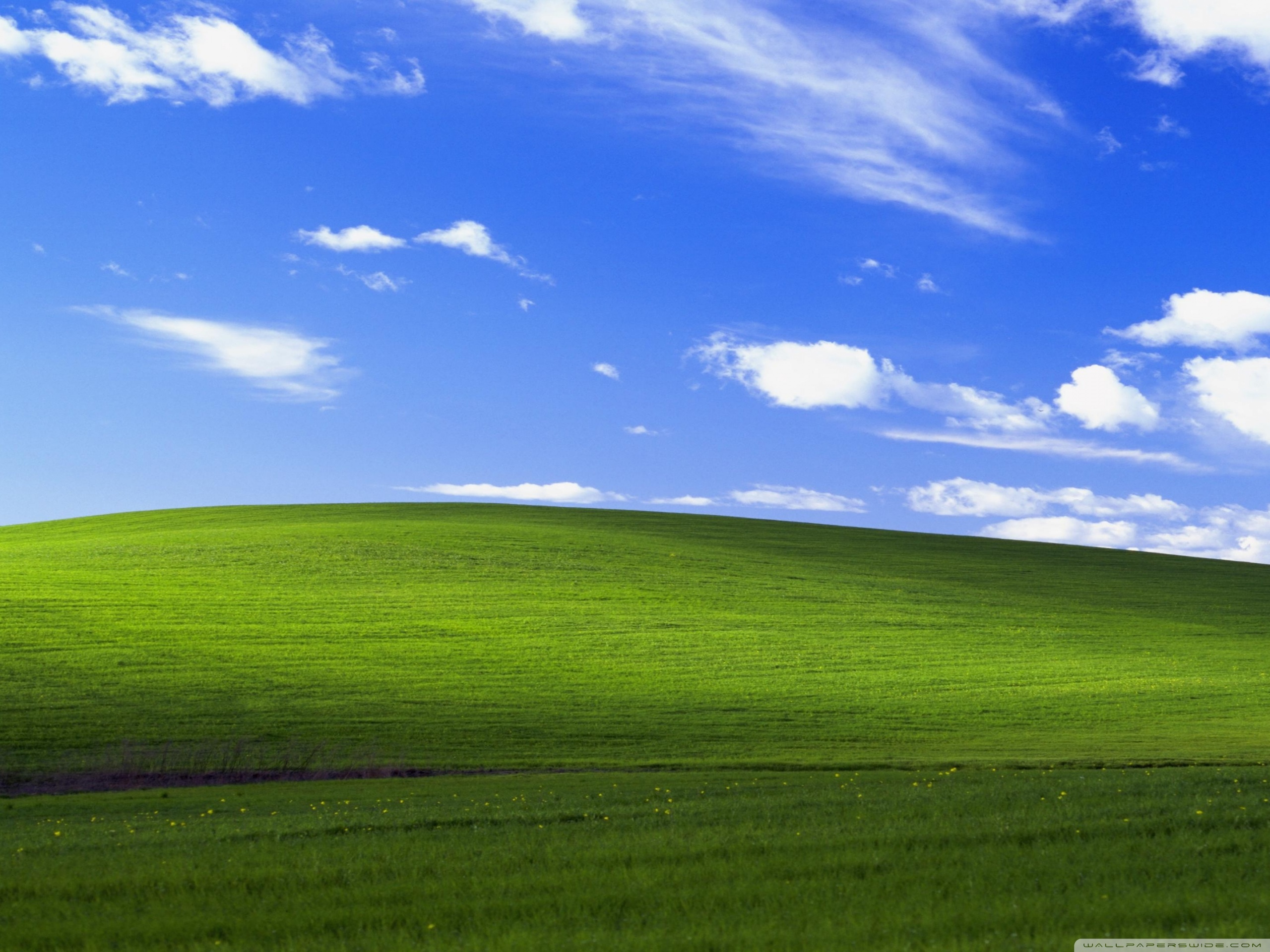 Windows XP Ultra HD Desktop Background Wallpaper for 4K UHD TV 2560x1920