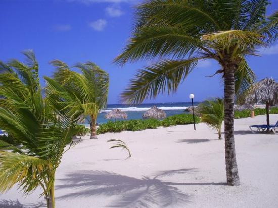 bay jamaica beach wallpapers 1600x1200 wallpaper desktop jamaica 550x412