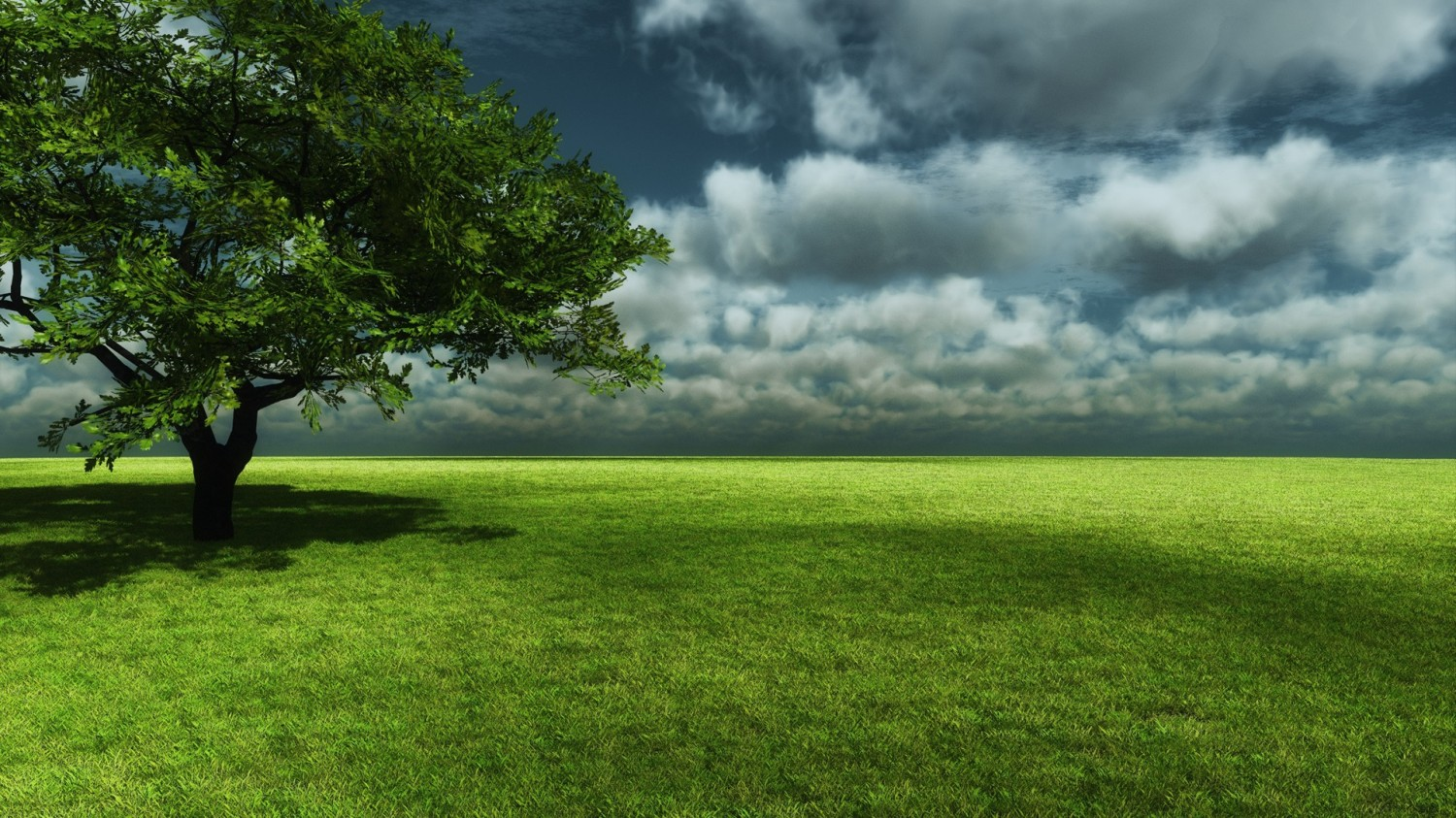3D Nature Tree Wallpapers HD Wallpaper of Nature   hdwallpaper2013com 1500x843